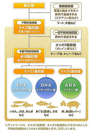 3つのオメガ脂肪酸